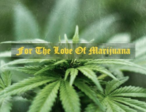 For The Love Of Marijuana By Marley marcus